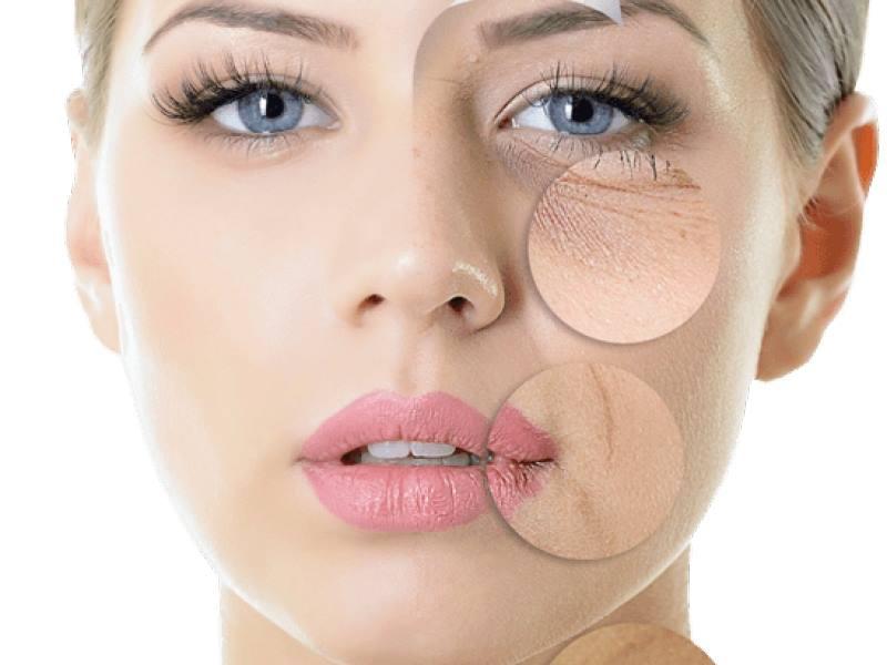 Collagen Verisol – Hiệu quả làm đẹp đã được kiểm chứng lâm sàng